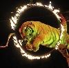 Цирки в Шарапово